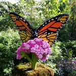 Lego butterfly sculpture.