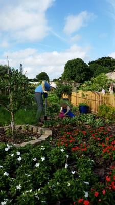 Gardening Grandpa and Granddaughter