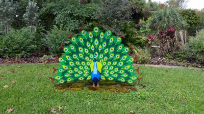 Peacock made entirely of Lego bricks